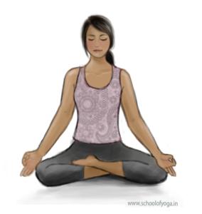 fitness using yogasana or poses  school of yoga